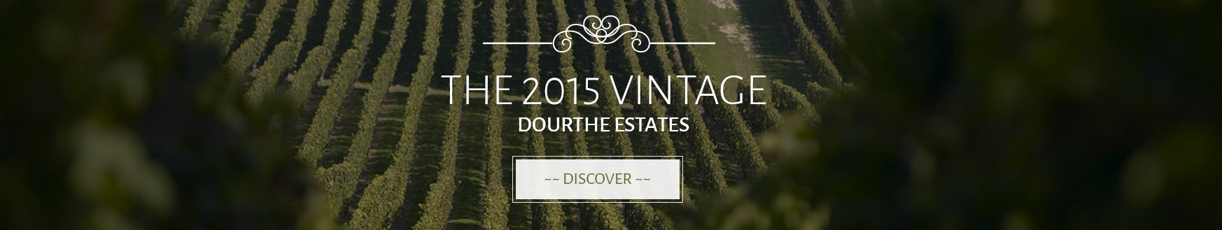 Discover the 2015 Vintages